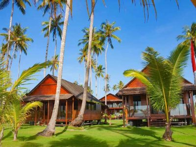 Telo Islands Surfing News